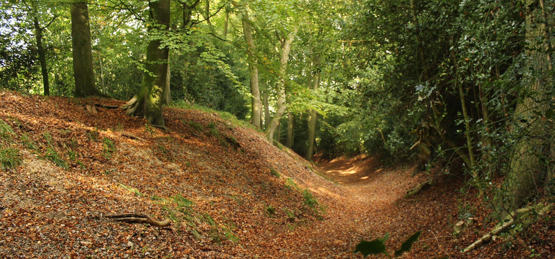 The impressive ditch that surrounds Cholesbury's Iron Age hillfort